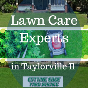 Lawn care in Taylorville Illinois