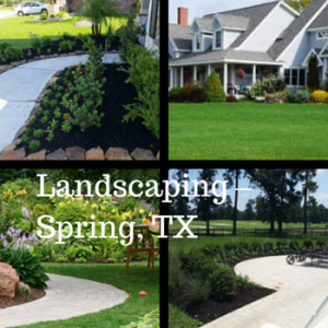 Tips in Landscaping Spring TX