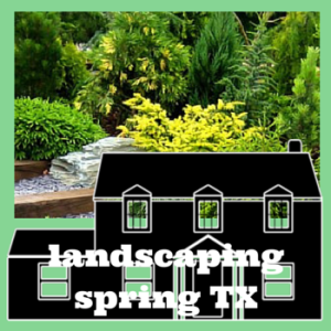 Techniques in landscaping Spring, TX experts use